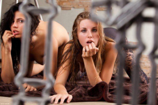 Две сексуальные девушки с шикарными сиськами позируют в колготках